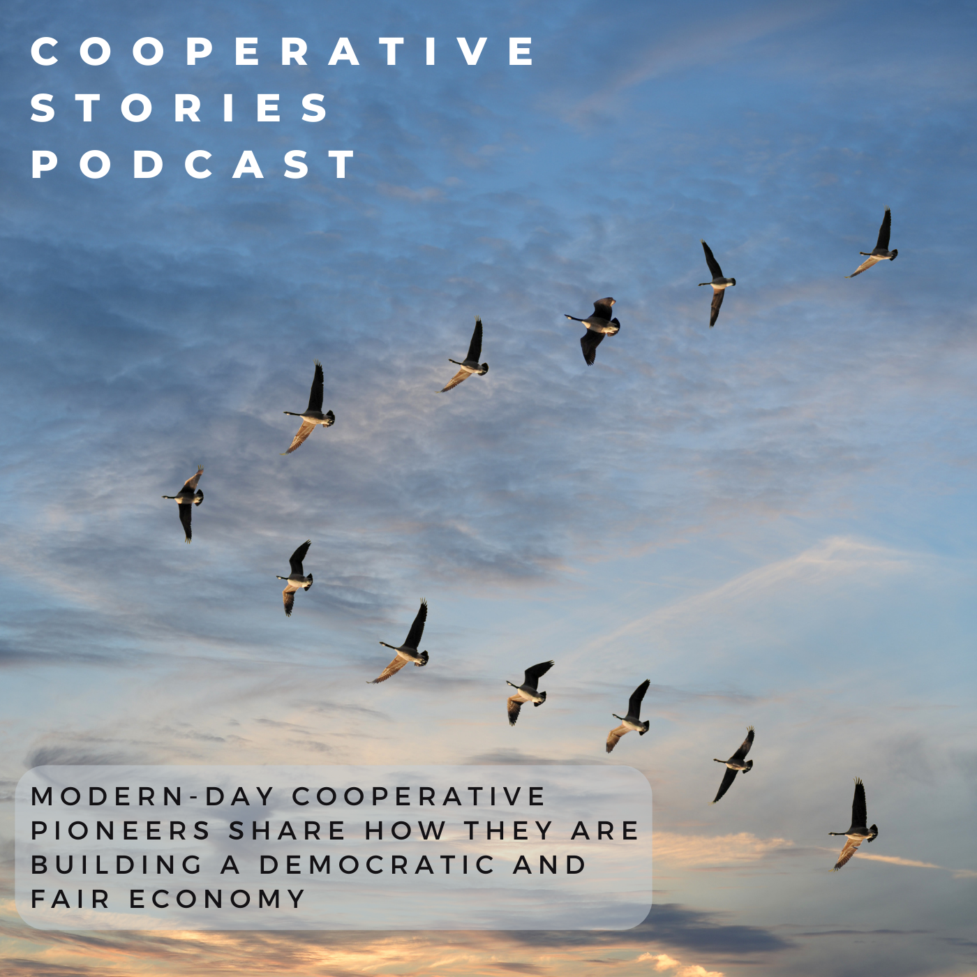 Cooperative Stories podcast